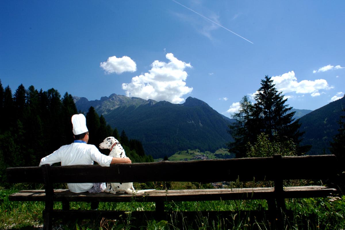 panorama dal ristorante Malga Panna